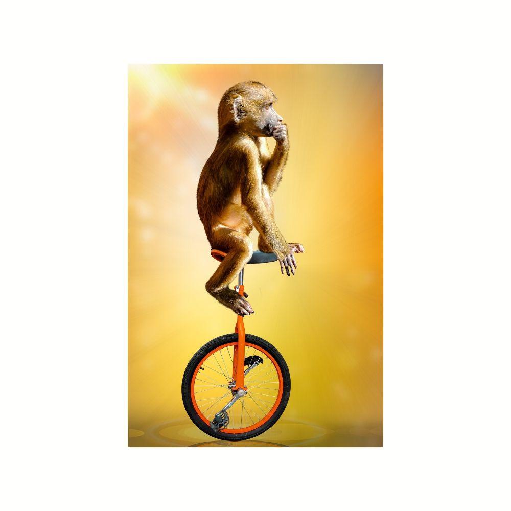 Placa Decorativa MDF Macaco em Monociclo