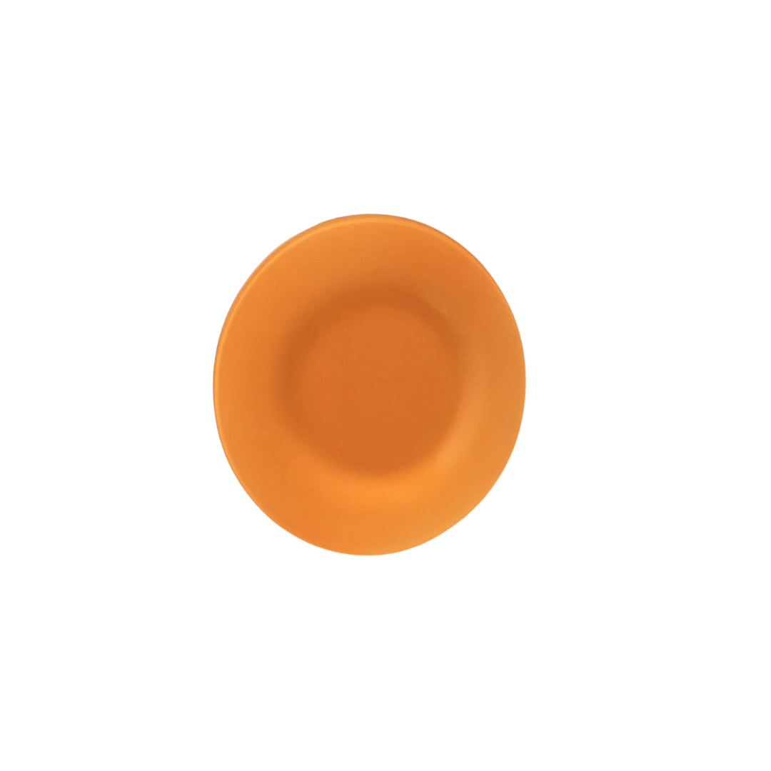 Prato Raso 01 Peça em Vidro Laranja Liso