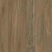 Piso Pointer 60 x 60 Deck Canela Externo Ref 40238