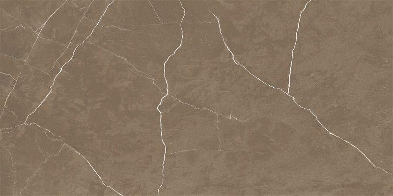 Porcelanato Helena Splendor Bronzo 61 x 120 Polido