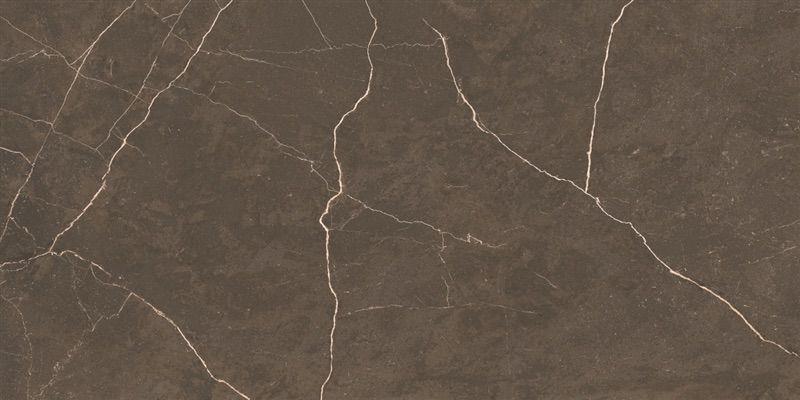 Porcelanato Helena Splendor Taupe 61 x 120 Polido