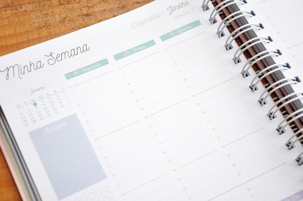 Planner Abacaxis