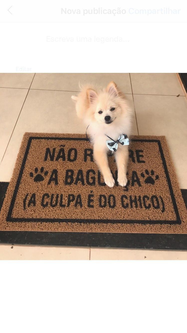 Capacho Bangunça do Cachorro Personalizavel