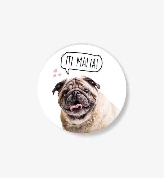 Pop Socket PERSONALIZADO COM A FOTO DO SEU PET