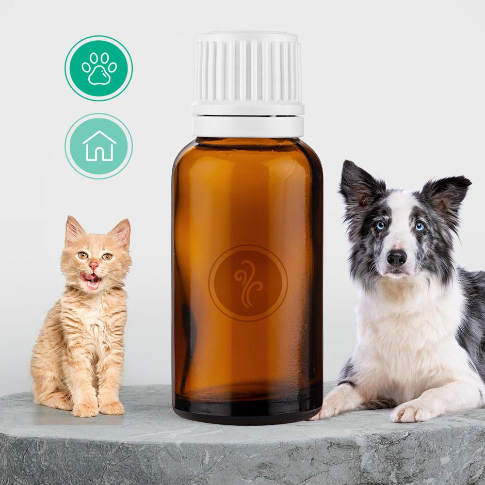 Essência Pet Floral (neutraliza odor)