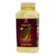 MANTEIGA DE CACAU- MYCRYO 550G - CACAO BARRY