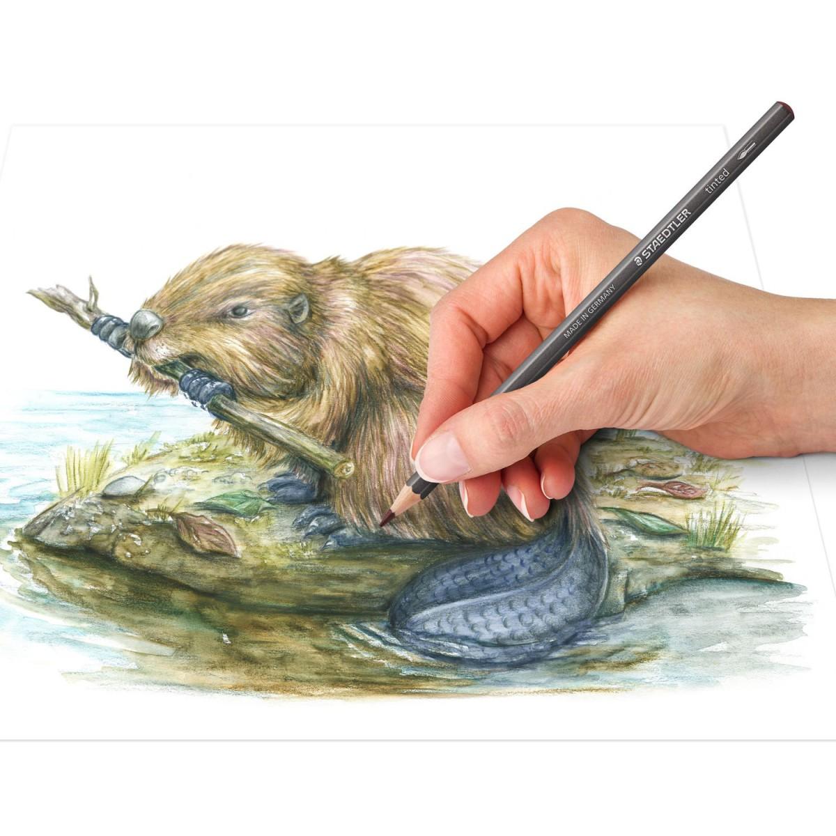 Lápis de Cor Aquarelável Staedtler 12 Cores Tintado Lata