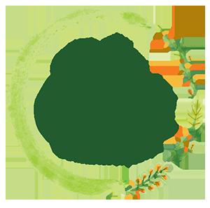 Lá do Quintal