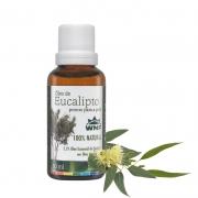 Óleo de Eucalipto pronto para a pele| WNF - 30ml