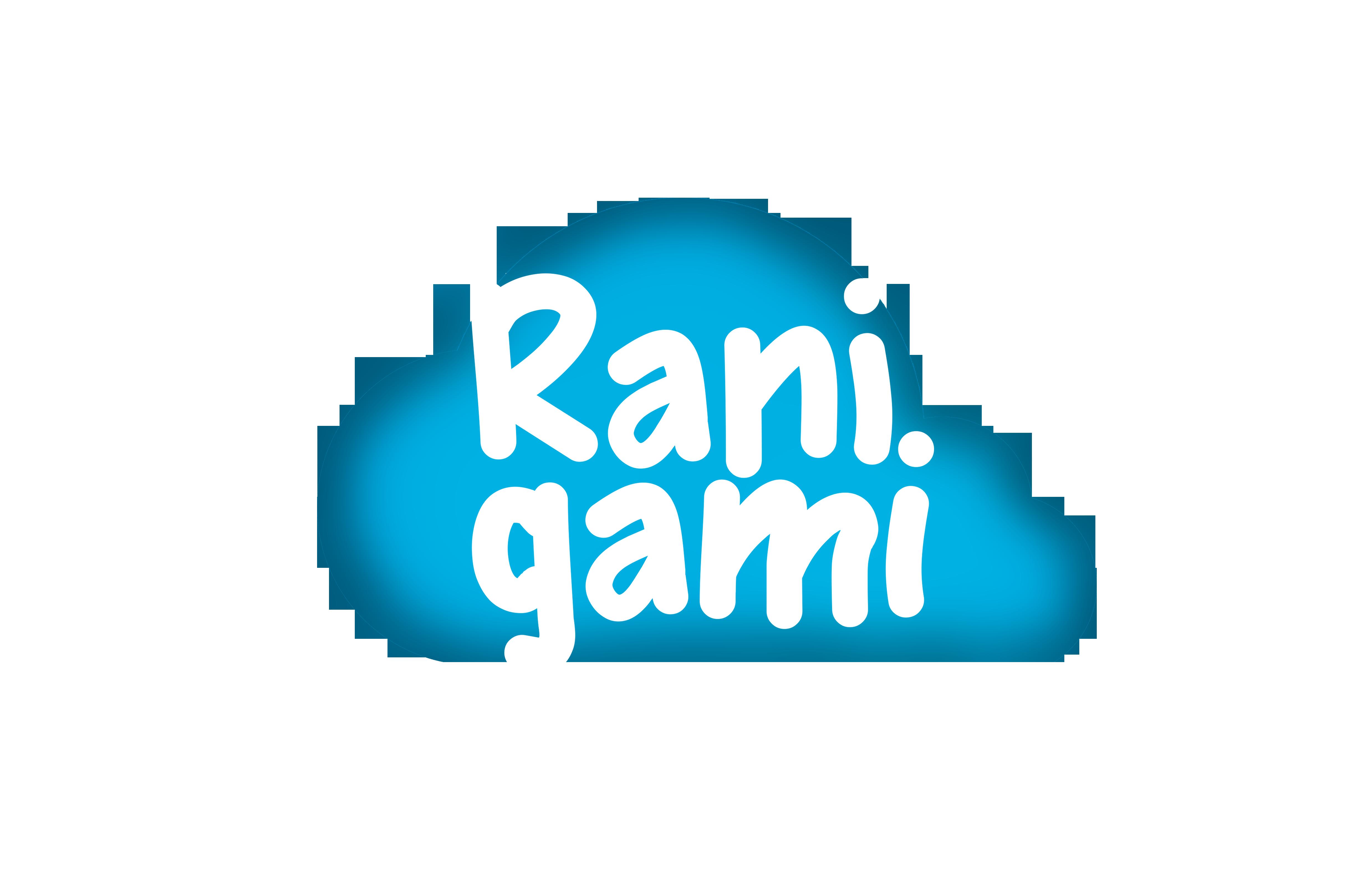 RANIGAMI BRINQUEDOS