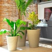 Kit de 3 Vasos Bali Cor Antique Camurça