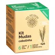 Kit Mudas | Cebolinha