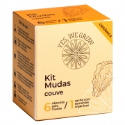 Kit Mudas | Couve