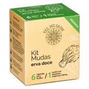 Kit Mudas | Erva Doce