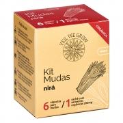 Kit Mudas | Nirá