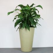 Vaso Terra Cone 38 x 55 cm Vasart