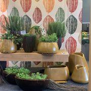 Vaso Tulipa Bowl 40 x 10 cm - VASART