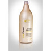 LISS EXPORT - CONDICIONADOR TREATMENT AND CONTROL WF COSMETICOS 1,5L