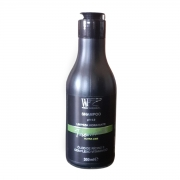 PREMIUM - Shampoo Ultra Lizz WF COSMETICOS  300ml