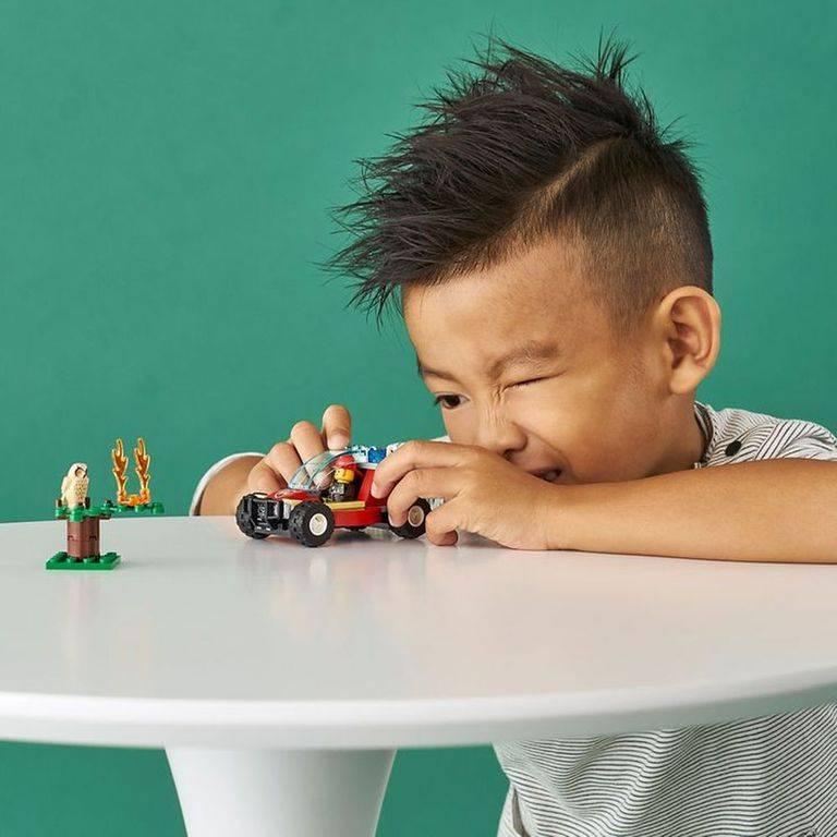 LEGO City - Floresta em Chamas 60247