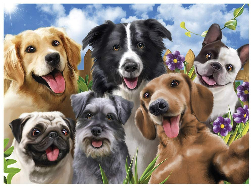 Quebra Cabeça - Selfie Pets 500 peças