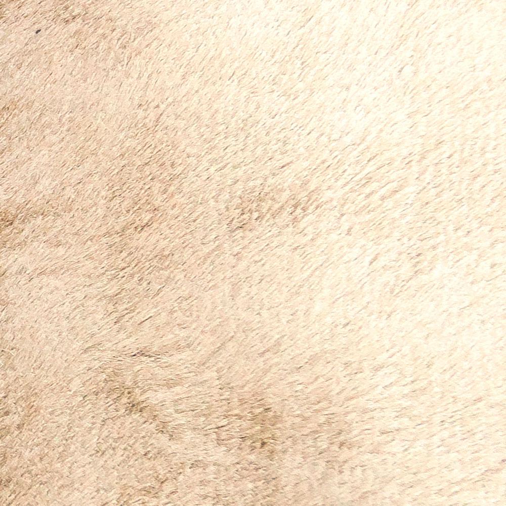 Tapete Agra 200 x 250 cm - Marfim.