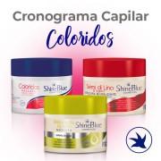Cronograma Capilar - Coloridos