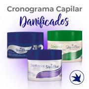 Cronograma Capilar - Danificados