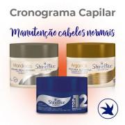 Cronograma Capilar - Manuteção (Cabelos Saudáveis)