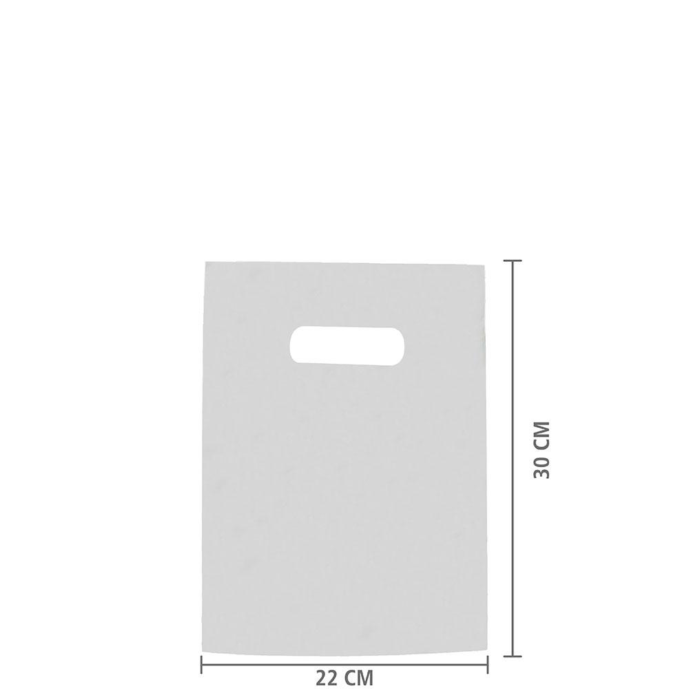 Sacola de Plástico Alça Vazada PP (Sem Impressão) 22x30 cm | Pct c/ 200 unid