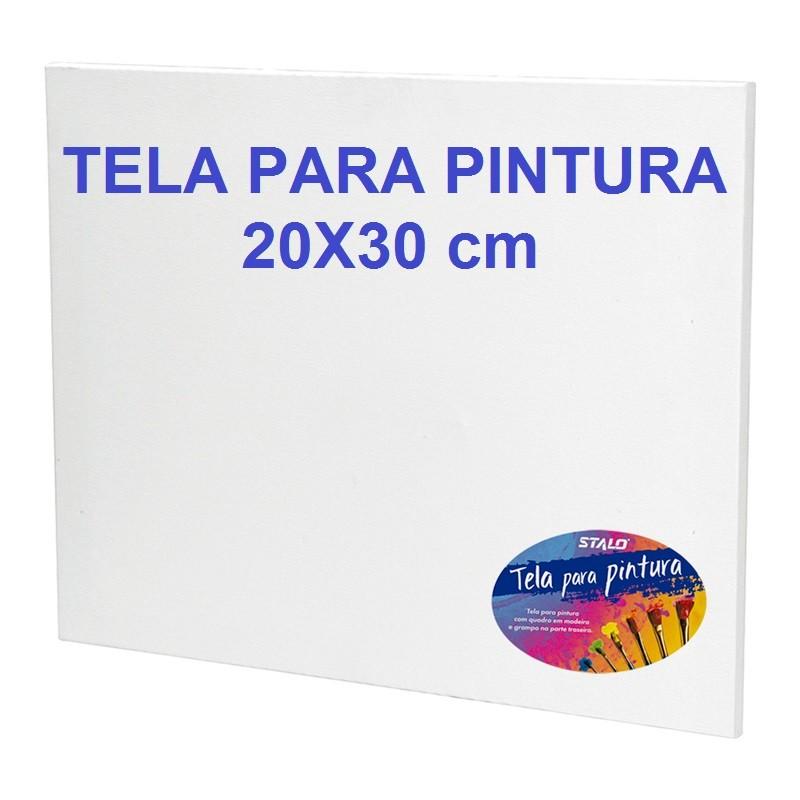 TELA PARA PINTURA 20X30 STALO