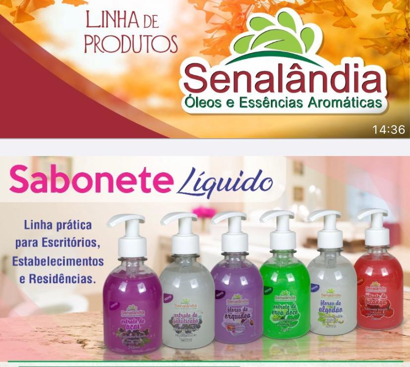 Sabonete Líquido Várias Fragrâncias 250ml.