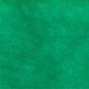 TOALHA DE TNT VERDE 1,40M X 2,20 HALLEY