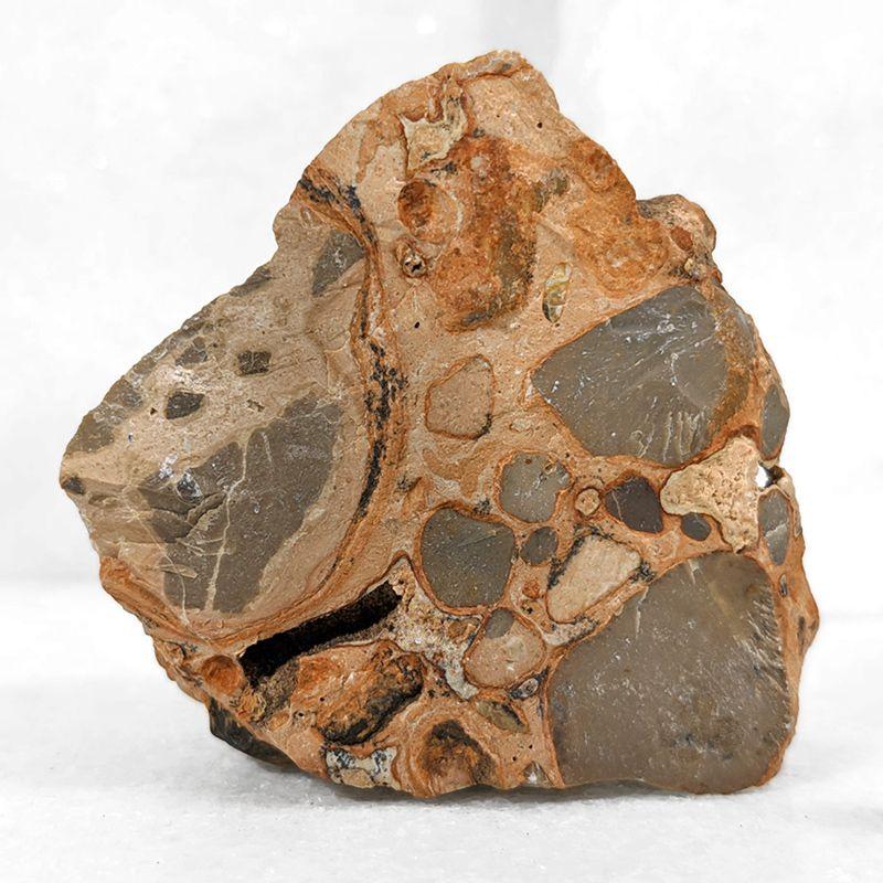 Leopardita - 6 cm