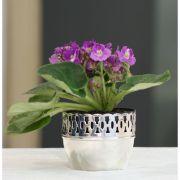 Cachepot violeta grade renda P