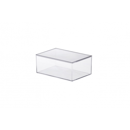 Caixa Organizadora c/ Tampa 16,5x11x7 Cm