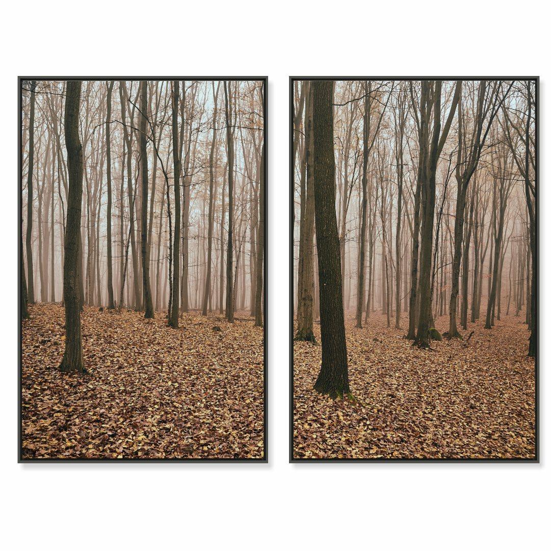 Composição com 2 Quadros Decorativos com Paisagem de Floresta