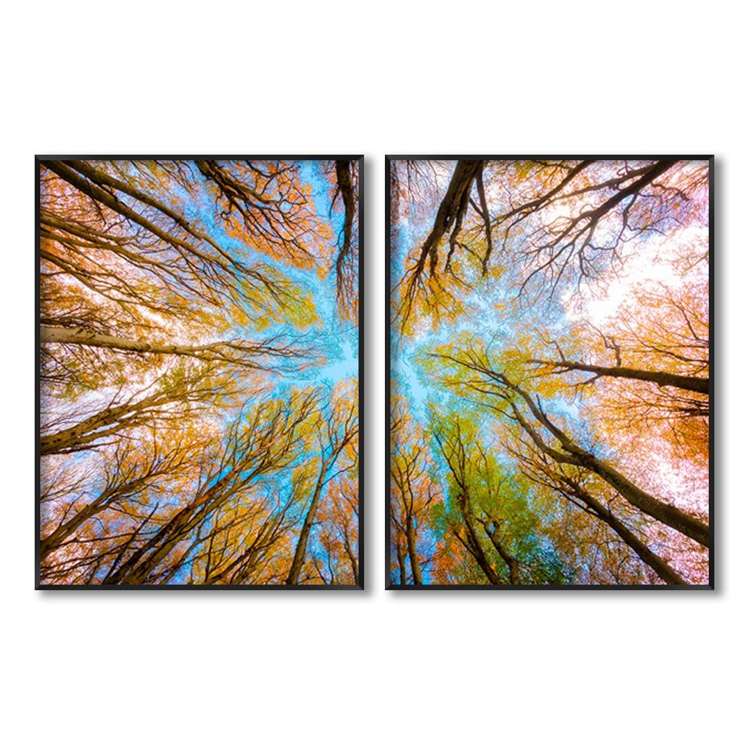 Composição com 2 Quadros Decorativos com Fotografia Copa de Árvore