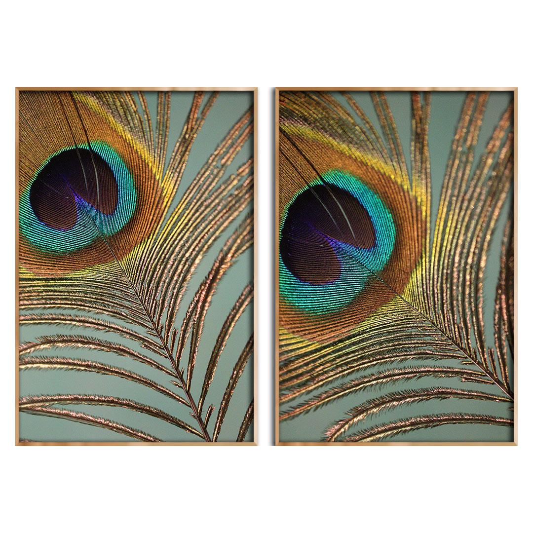 Conjunto com 2 Quadros Decorativos com Pena de Pavão
