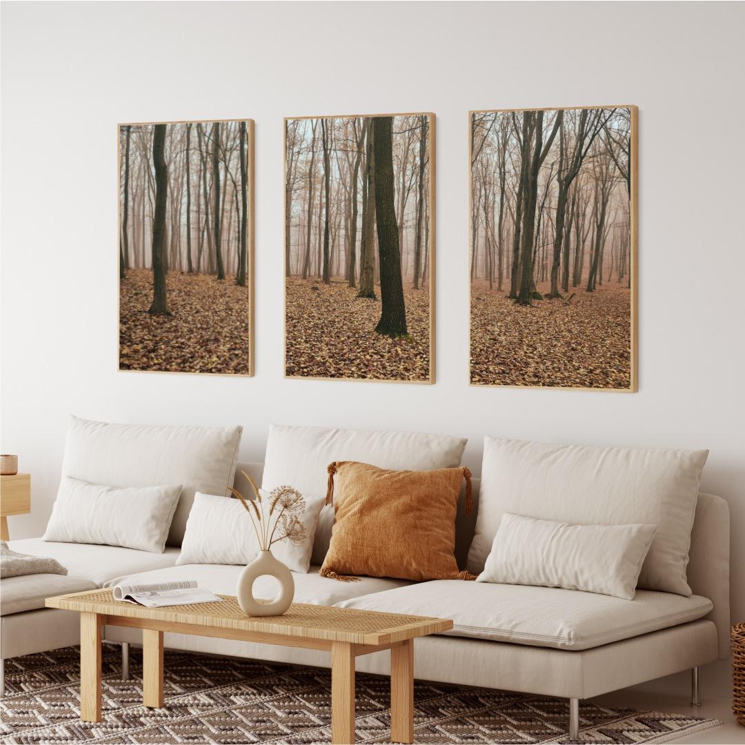 Conjunto com 3 Quadros Decorativos com Paisagem de Floresta