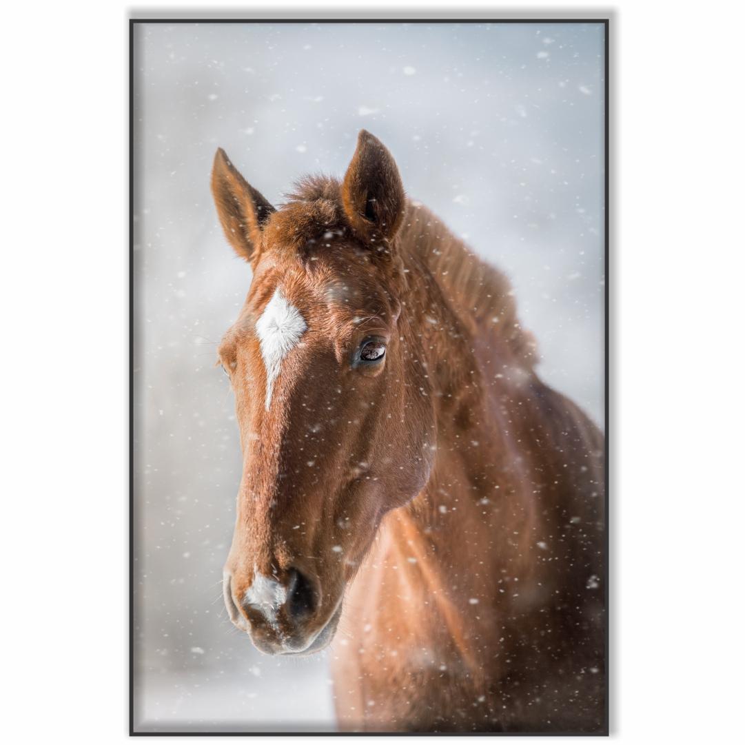Quadro Decorativo com Cavalo e Flocos de Neve