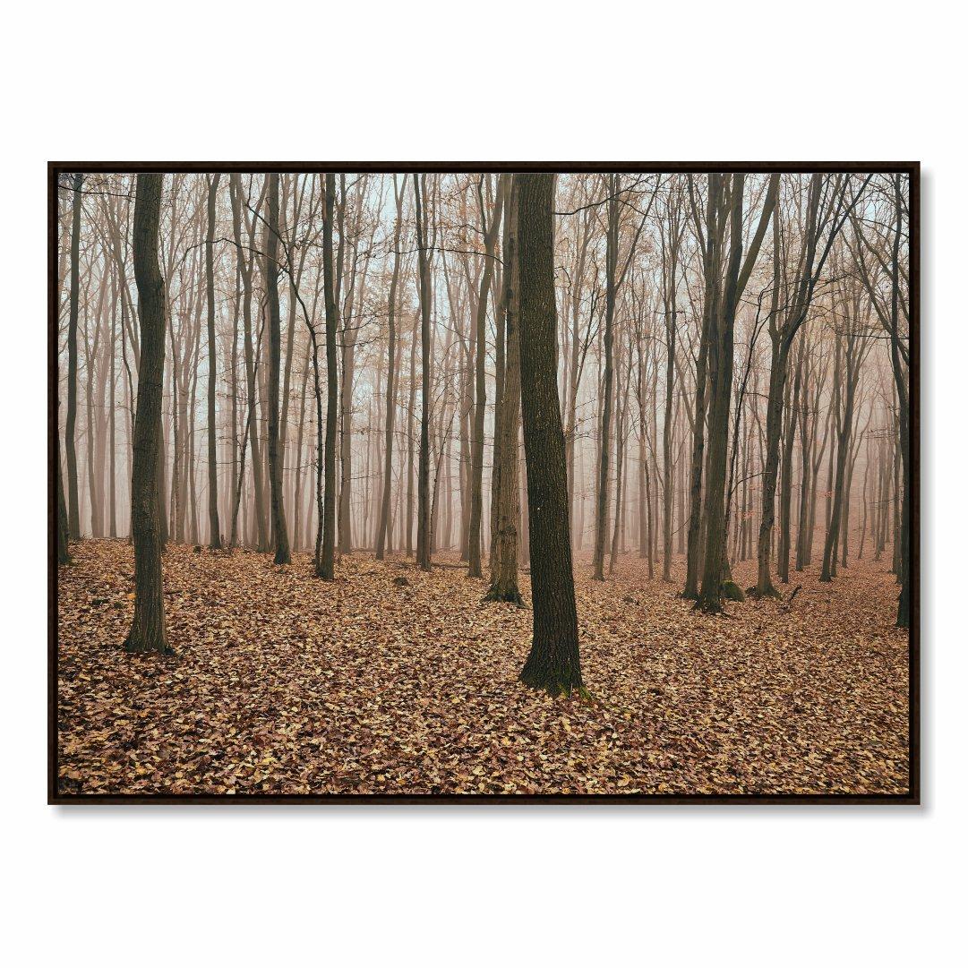 Quadro Decorativo com Paisagem de Floresta