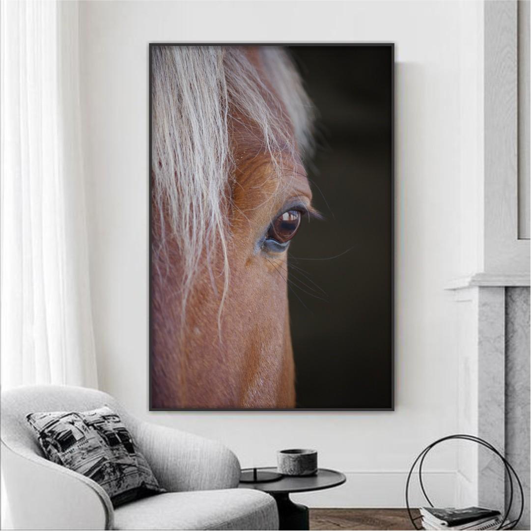 Quadro Decorativo de Cavalo com Pelagem Marrom