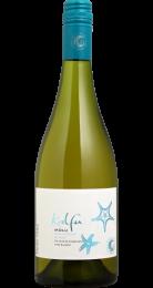 Vinho Tinto Chileno Kalfu Molu Sauvignon Blanc