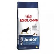 Ração Royal Canin 15kg Maxi Junior Cães Filhotes de Raças Grandes 15 kg