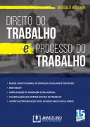 DIREITO DO TRABALHO E PROCESSO DO TRABALHO 1 EDIÇÃO 2019 - BRAGHINI - JH MIZUNO