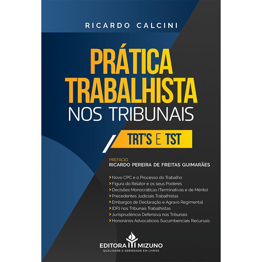 PRÁTICA TRABALHISTA NOS TRIBUNAIS - TRT'S E TST