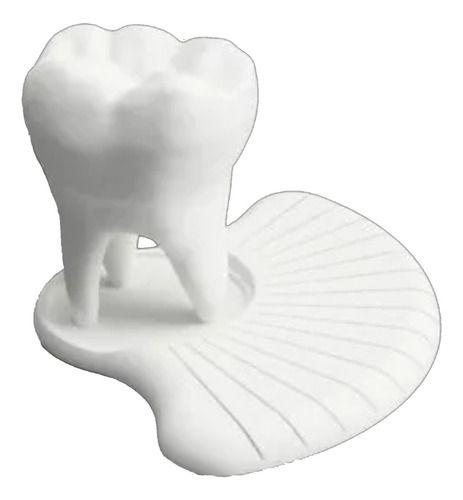 Suporte Cartão De Visita Para Dentistas Dente Decorativo