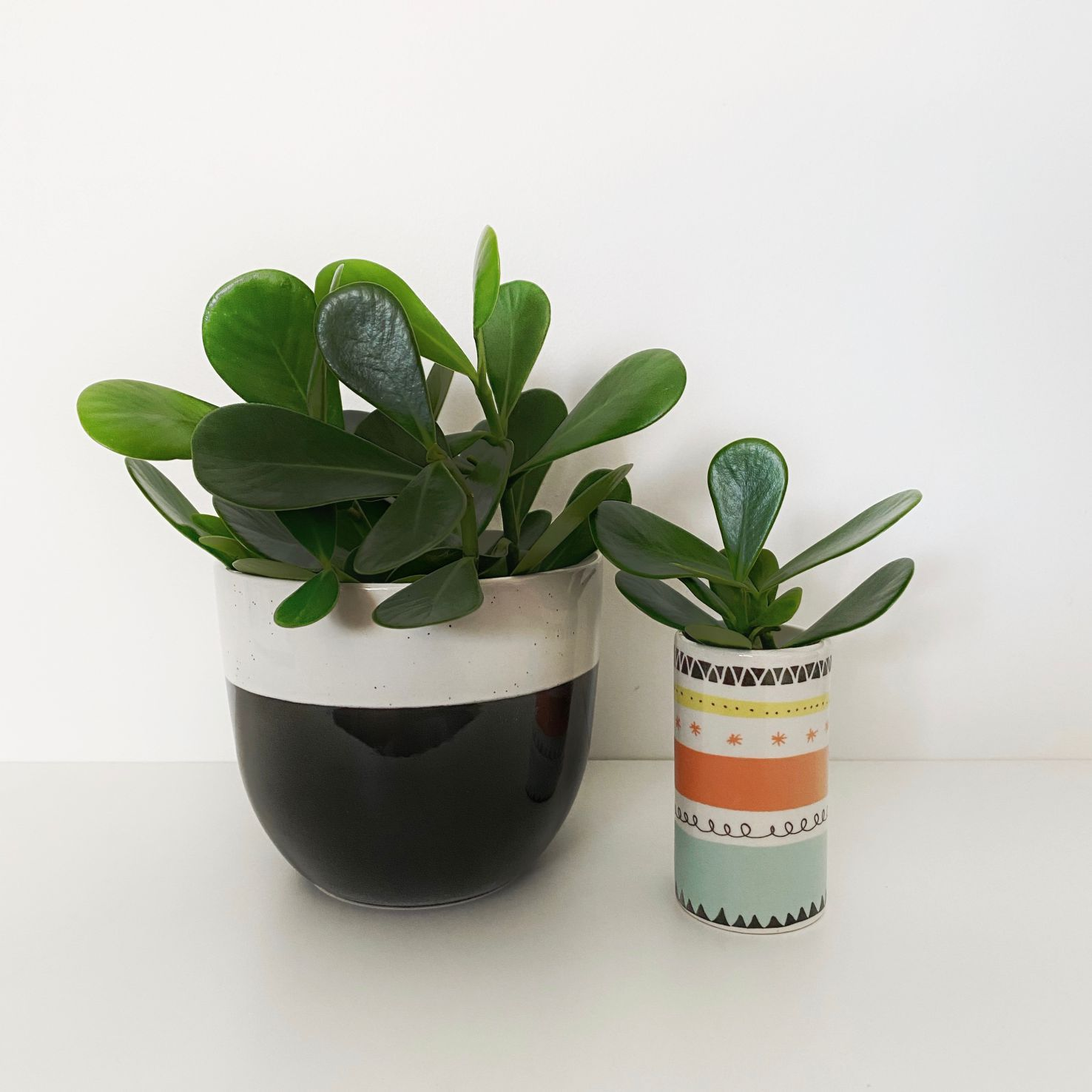 Vaso Cerâmica Mini Geométrico
