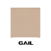Piso Cerâmico Industrial 240 x 240mm Bege 6039 / 1000 Unidade Gail